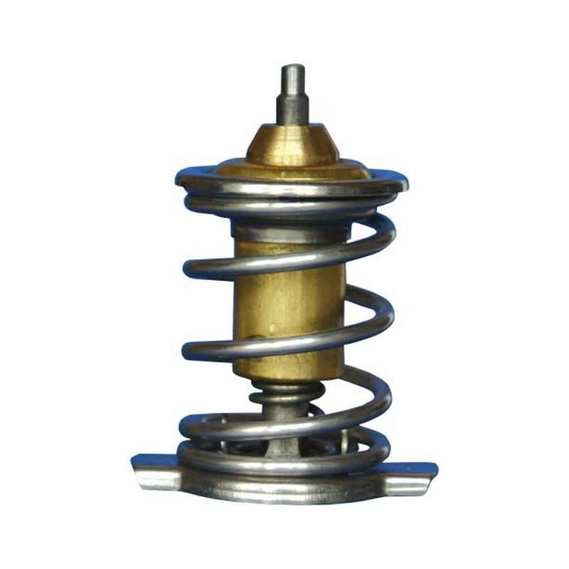 Фото №15 - элемент термостата ВАЗ 2110